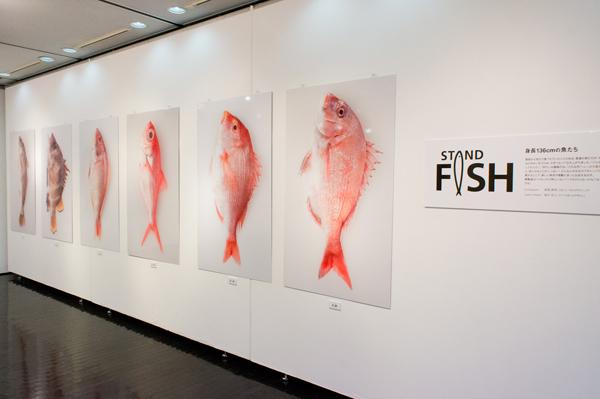 STAND FISH